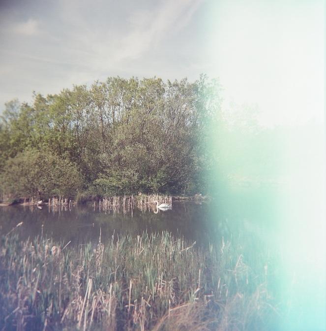 Wardley nature Reserve