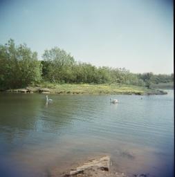 Wardley Lake