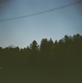 CHopwell Woods, Moon