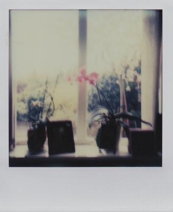 Window sill ~ fail