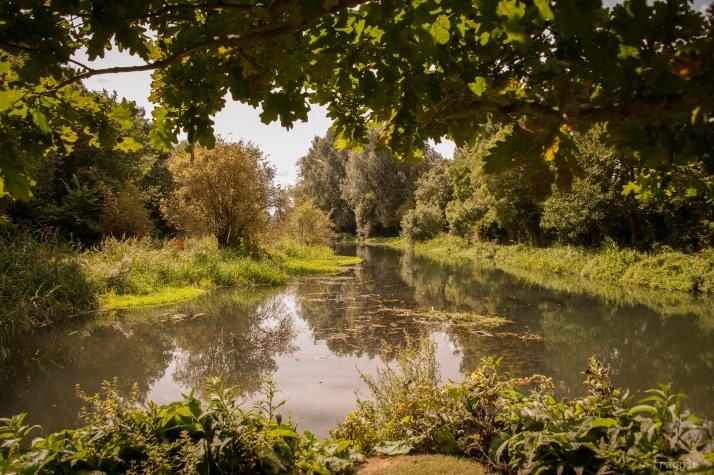 River Ouze