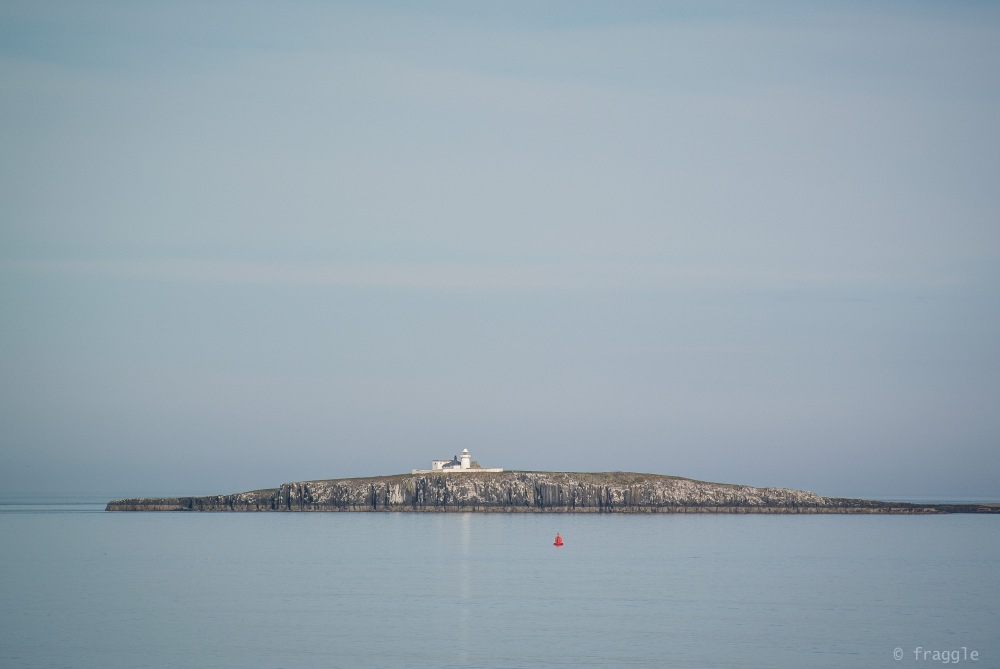 Farne Islands.