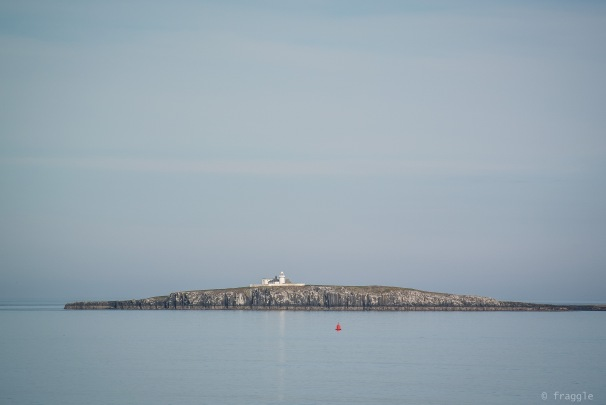 Farne Islands.