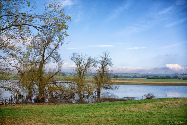 field lake thing