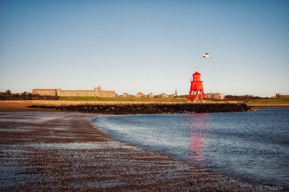 lighthouse & gull ~Nikon D700