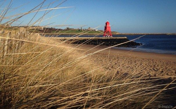Littlehaven beach
