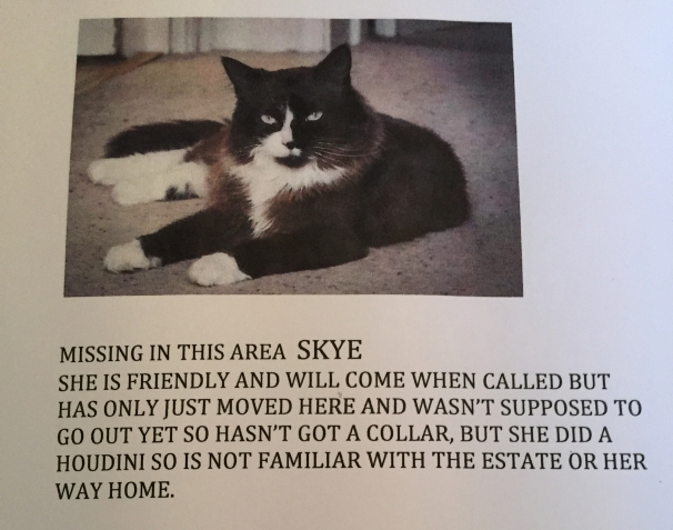 Skye come home!
