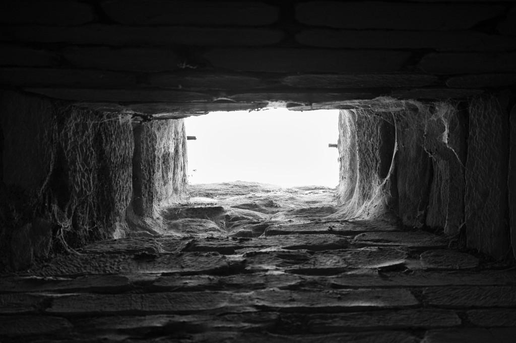 chimney & webs