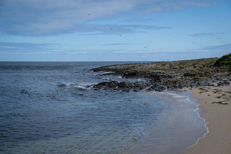 Seashore