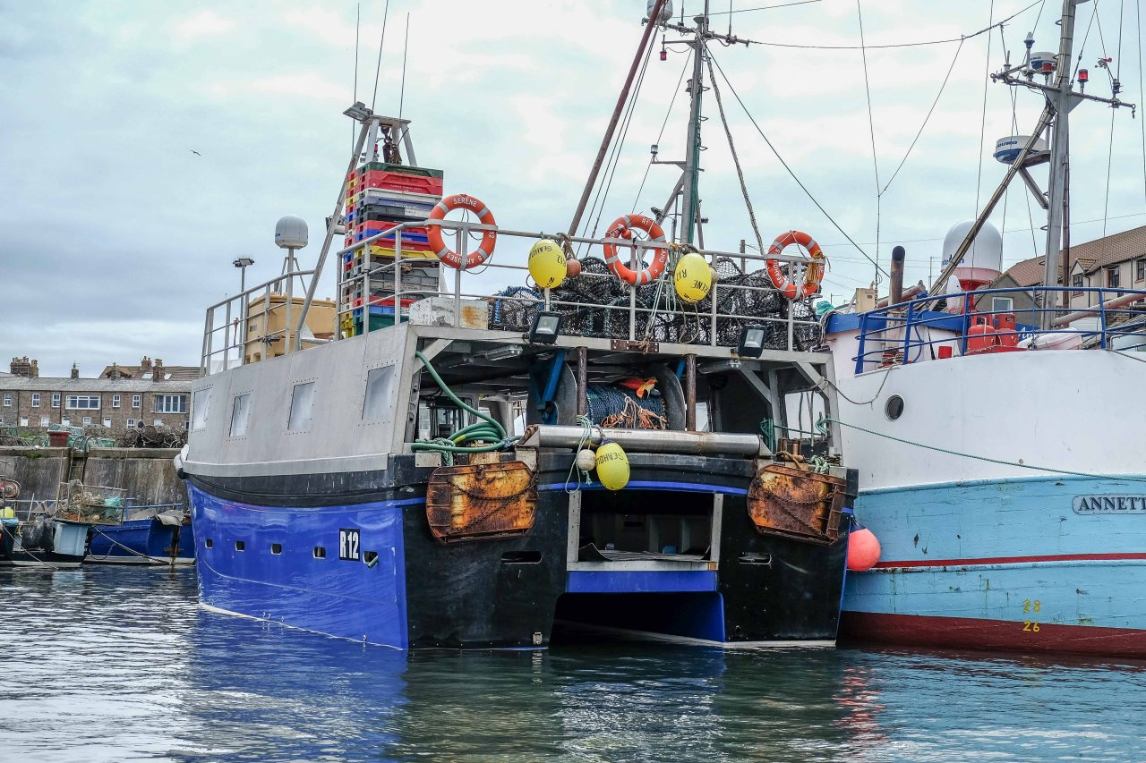 In the harbour at Seahouses