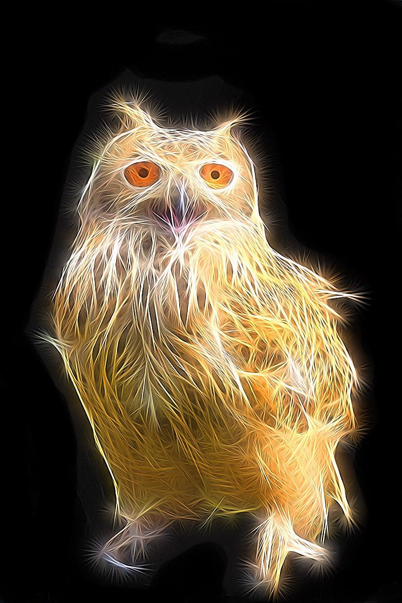 Glowy Owl