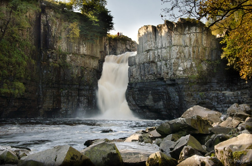 Highforce