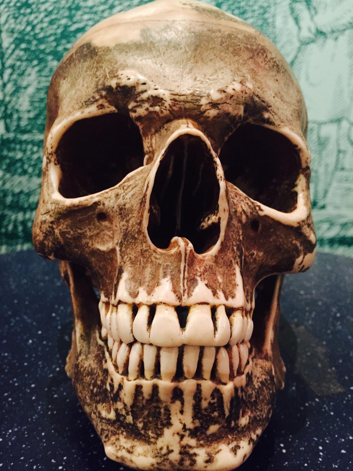 Replica skull