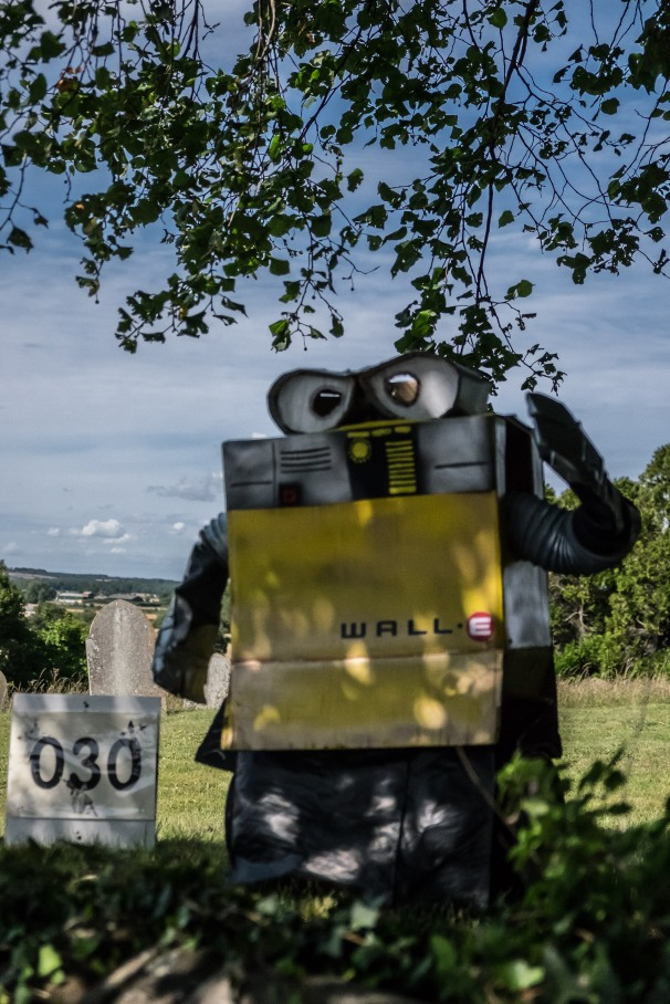 Wall-E by Tim & Maggie Theaker