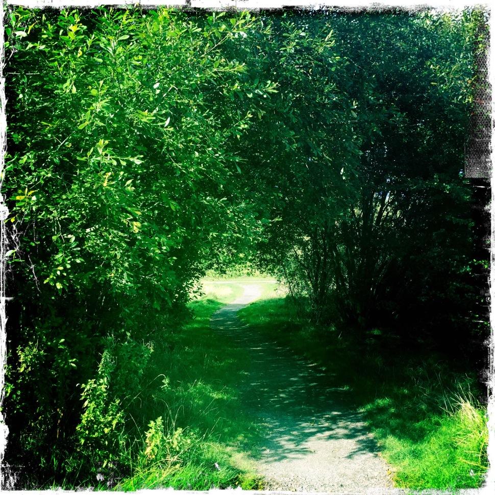 undercover path