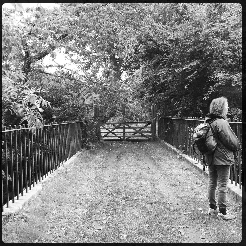 Sophie on a bridge