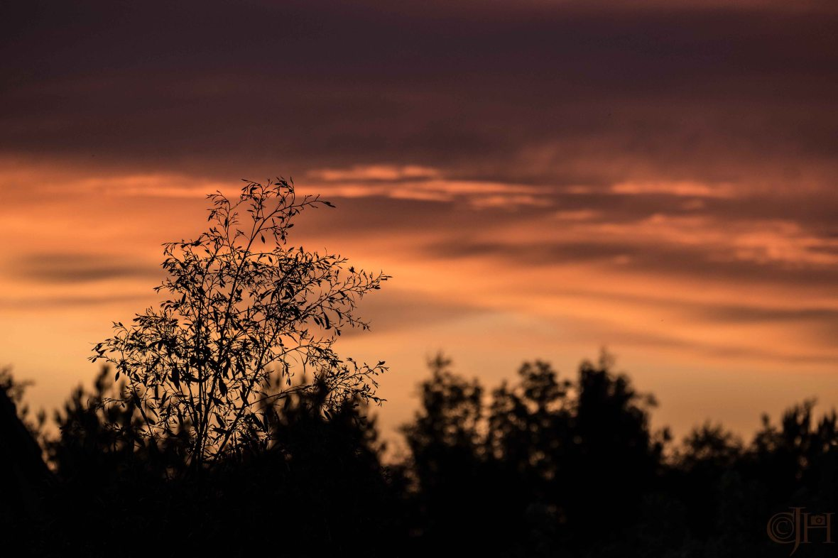 sunsetmay2016w