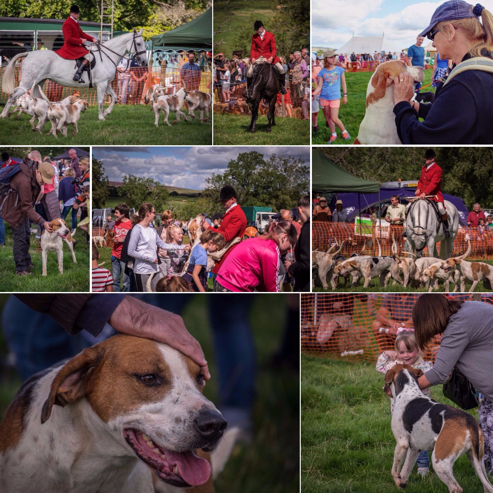 Simonside Country Fair ~ August 2017 ~Doggy edition