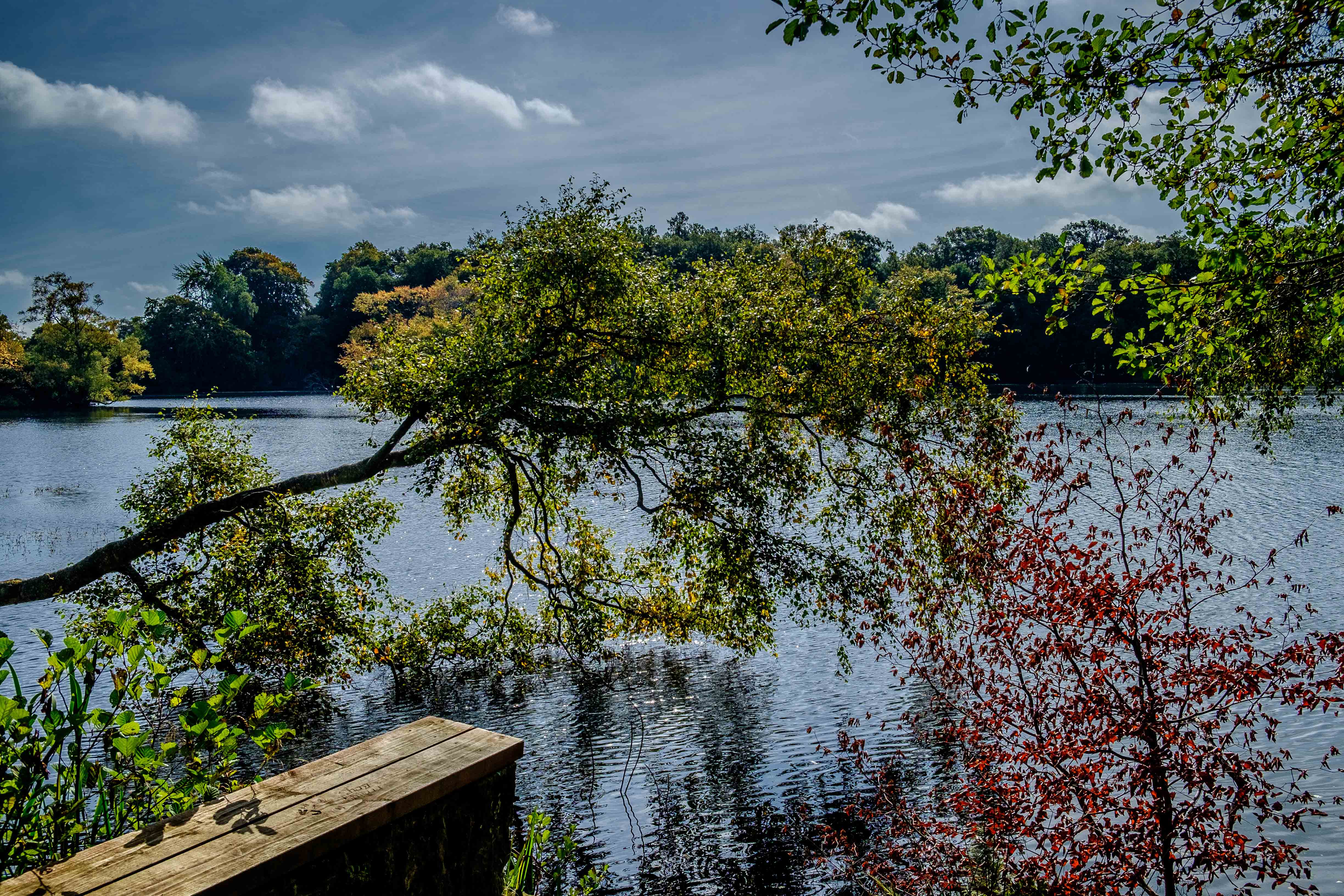 Fraggle Report~ Bolam Lake~September 2017