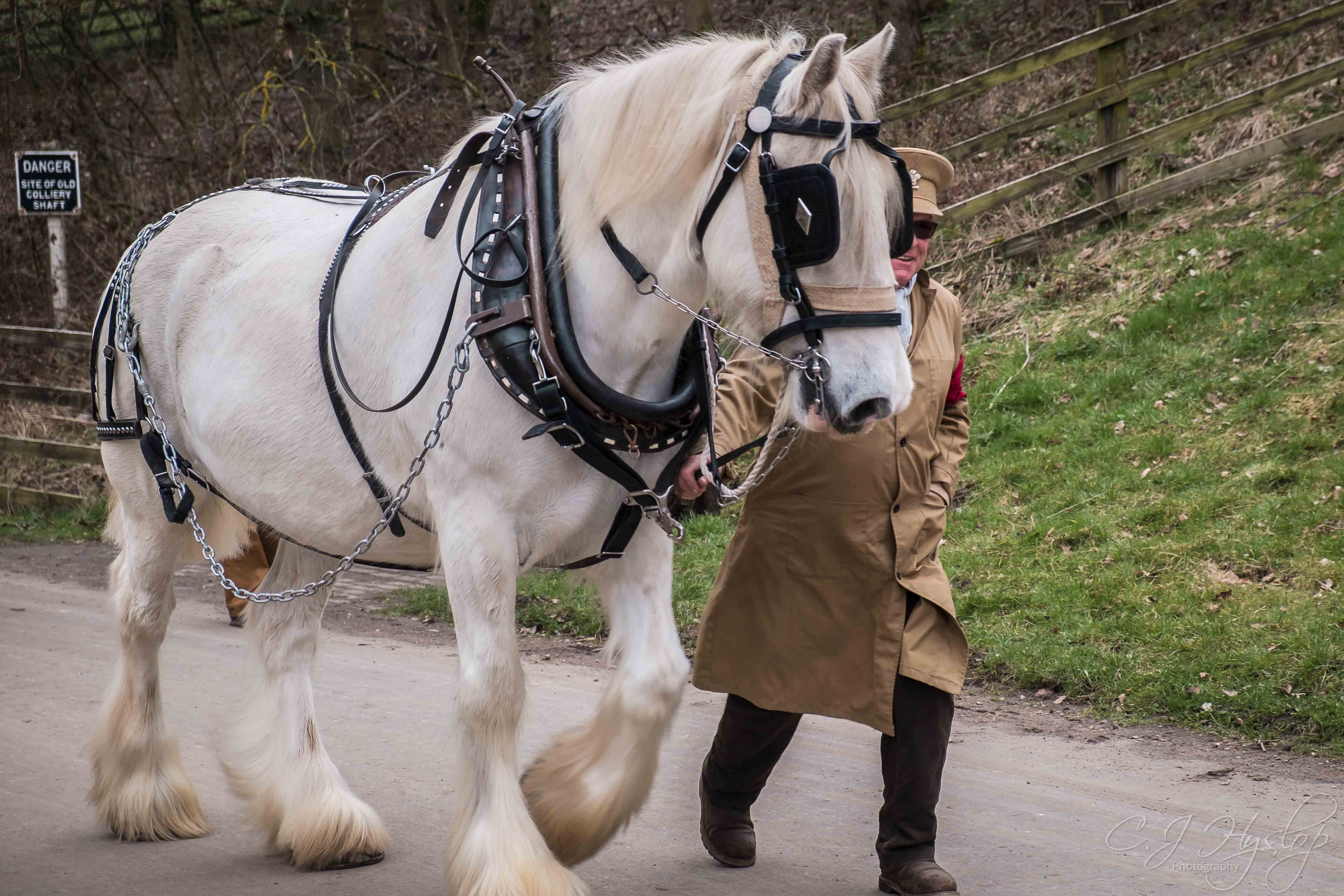 Beamish Museum ~ WW1 ~ Horses Edition ~ April 2018 ~ part 1