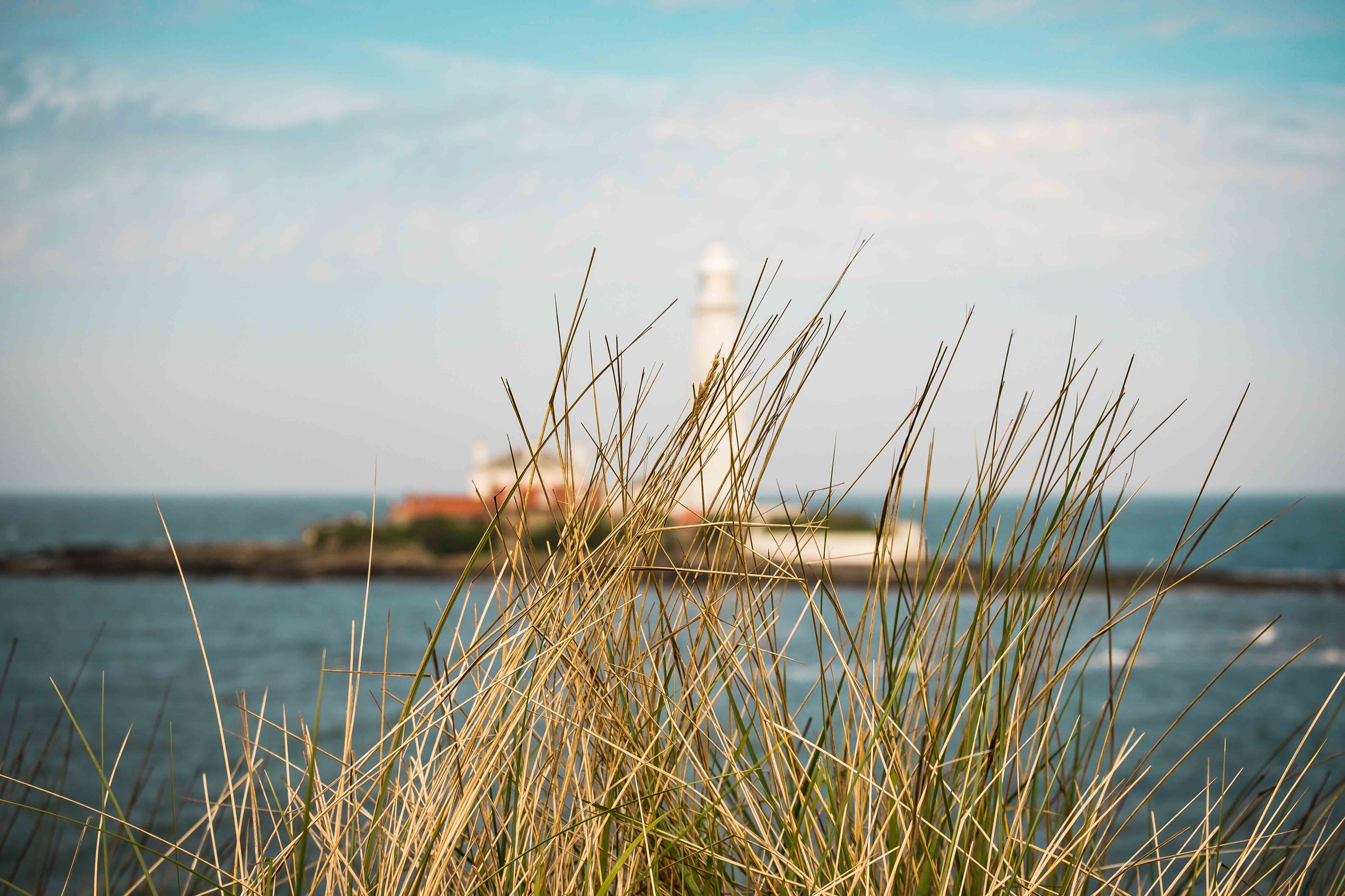 St.Mary's Lighthouse ~ May 2018