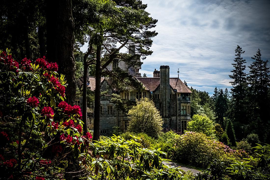 Cragside – Rhododendrons June 2019